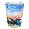 California Souvenir - CA Beach Shot Glass