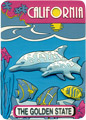 California State Magnet - The Golden State for Dolphins