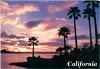 California Coastal Sunset Postcard, Large