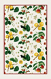 RHS Orchard - Linen Tea Towel
