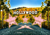 Hollywood Postcard, 4 L x 6 W