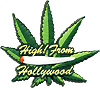 Greetings from Hollywood, High!
