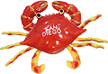 San Diego Beach Crab with Wiggly Legs, Souvenir Mag