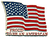 Patriotic USA Flag Magnet