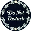 Do Not Disturb  Porcelain on Steel Sign, 3.5 D